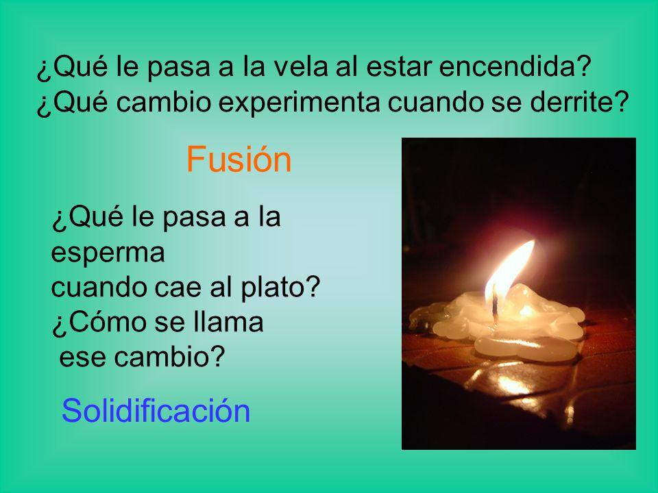 Fusión Solidificación ¿Qué le pasa a la vela al estar encendida