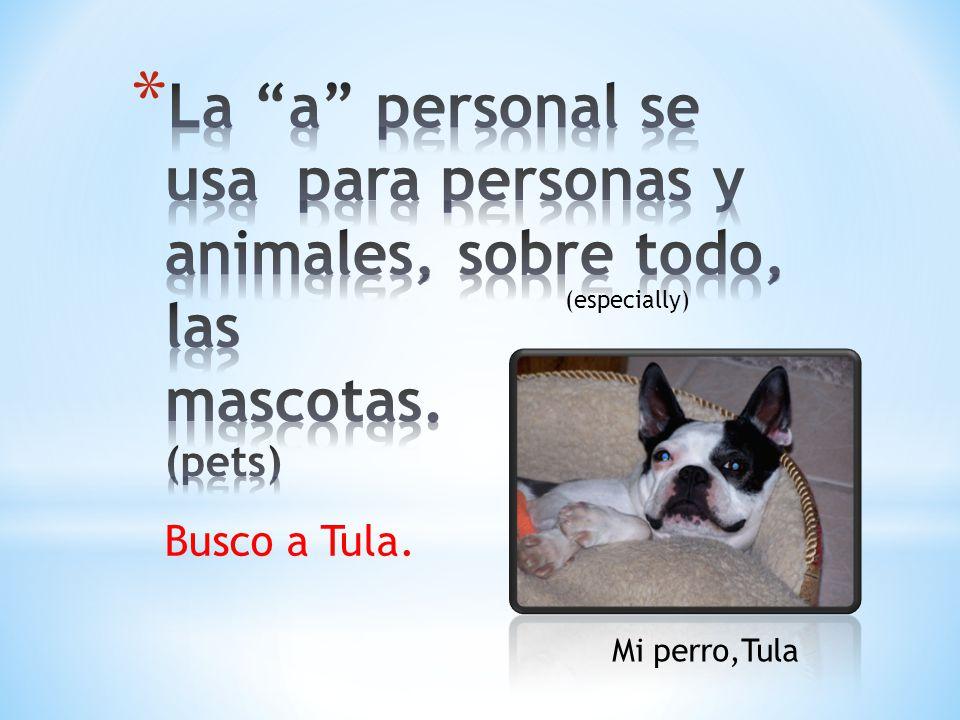 La a personal se usa para personas y animales, sobre todo, las mascotas. (pets)