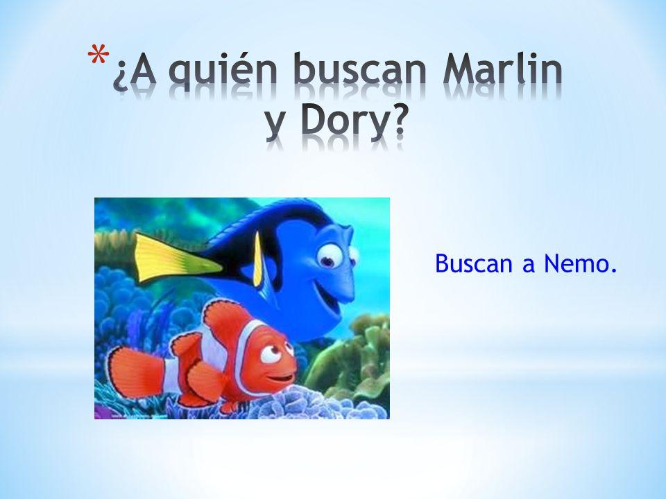 ¿A quién buscan Marlin y Dory