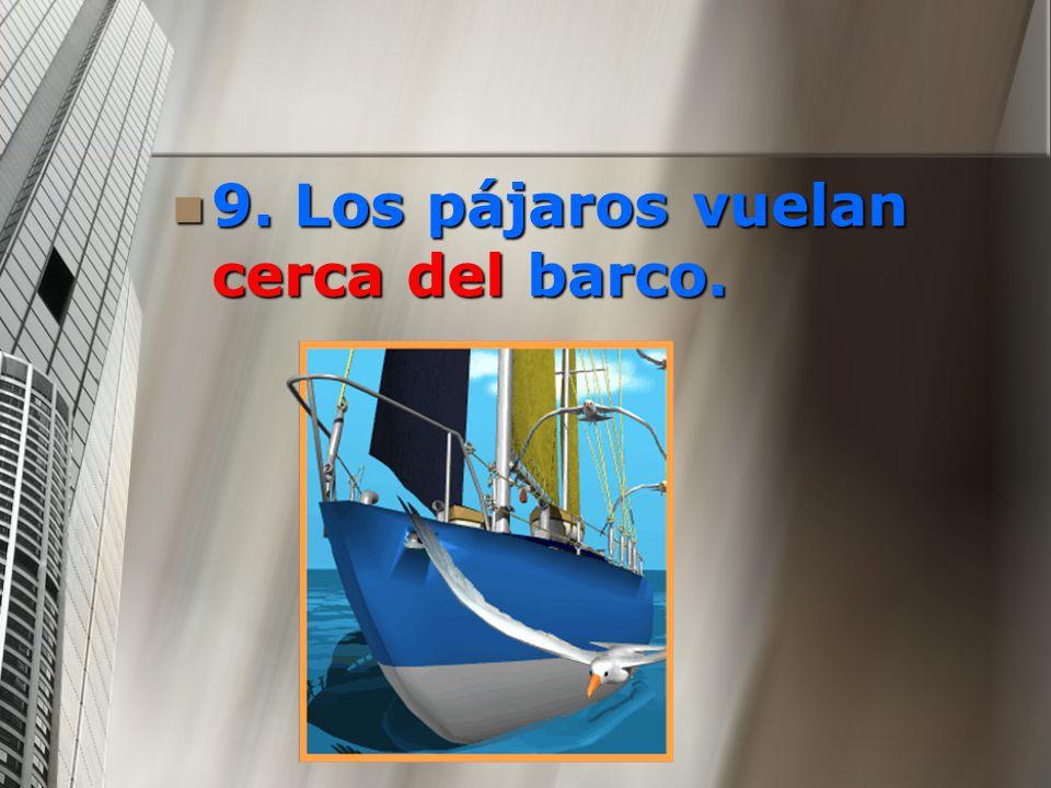 9. Los pájaros vuelan cerca del barco.