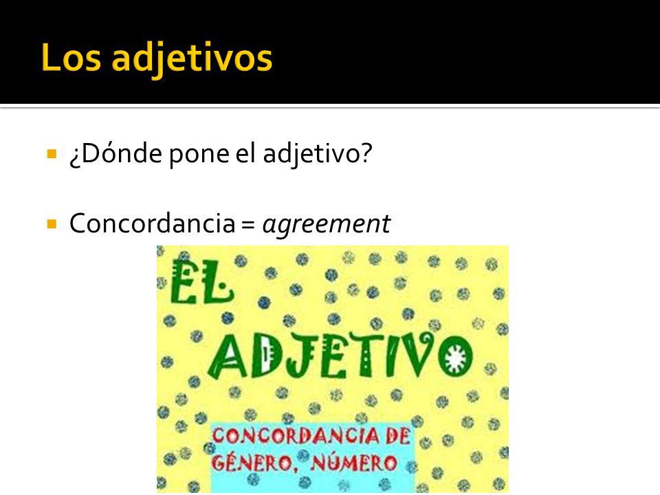 Los adjetivos ¿Dónde pone el adjetivo Concordancia = agreement