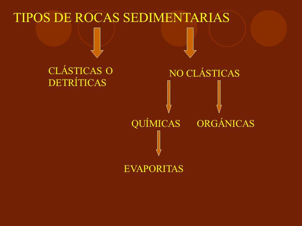 TIPOS DE ROCAS SEDIMENTARIAS