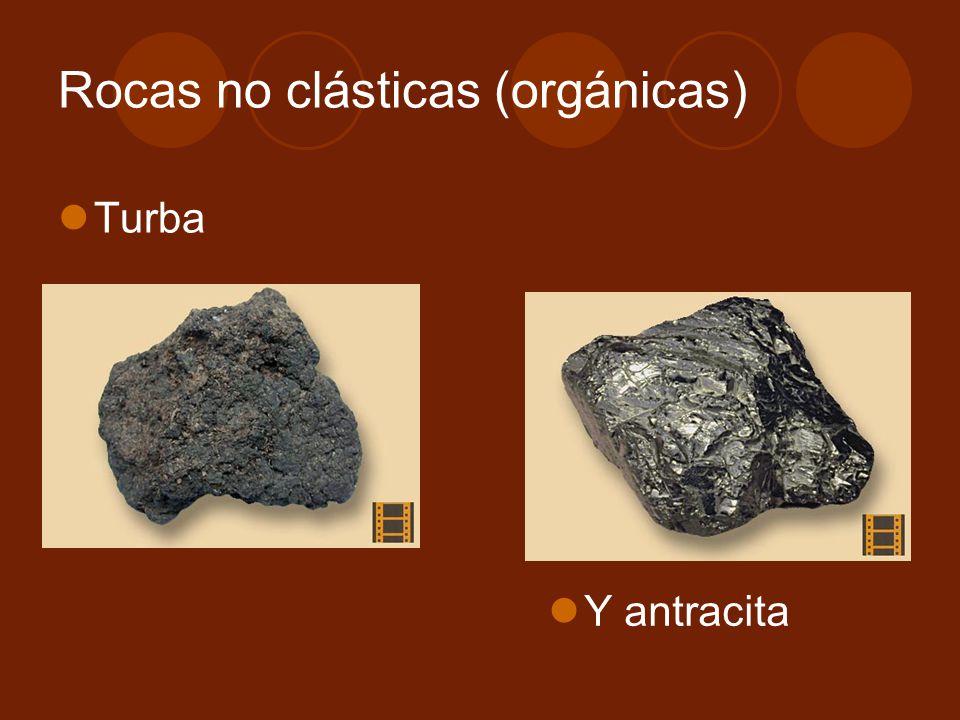 Rocas no clásticas (orgánicas)