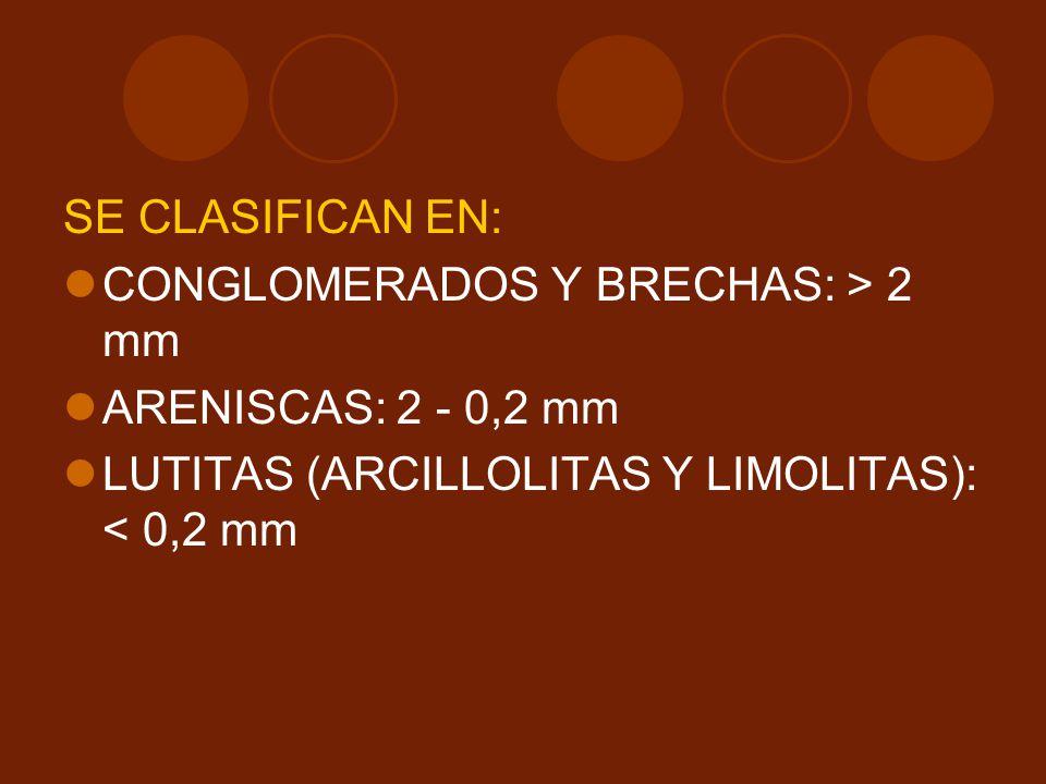 SE CLASIFICAN EN: CONGLOMERADOS Y BRECHAS: > 2 mm.
