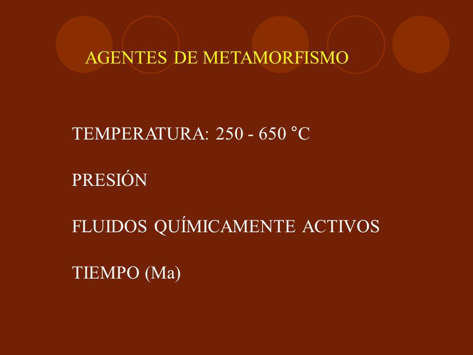 AGENTES DE METAMORFISMO