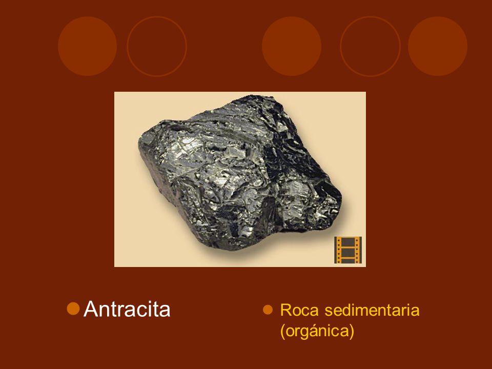 Antracita Roca sedimentaria (orgánica)