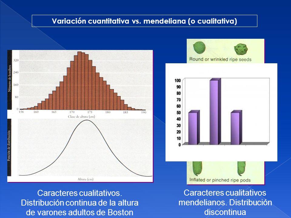 Variación cuantitativa vs. mendeliana (o cualitativa)