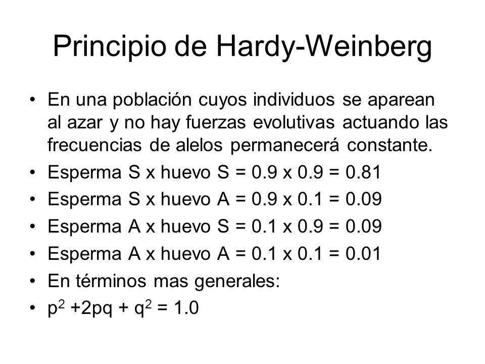 Principio de Hardy-Weinberg