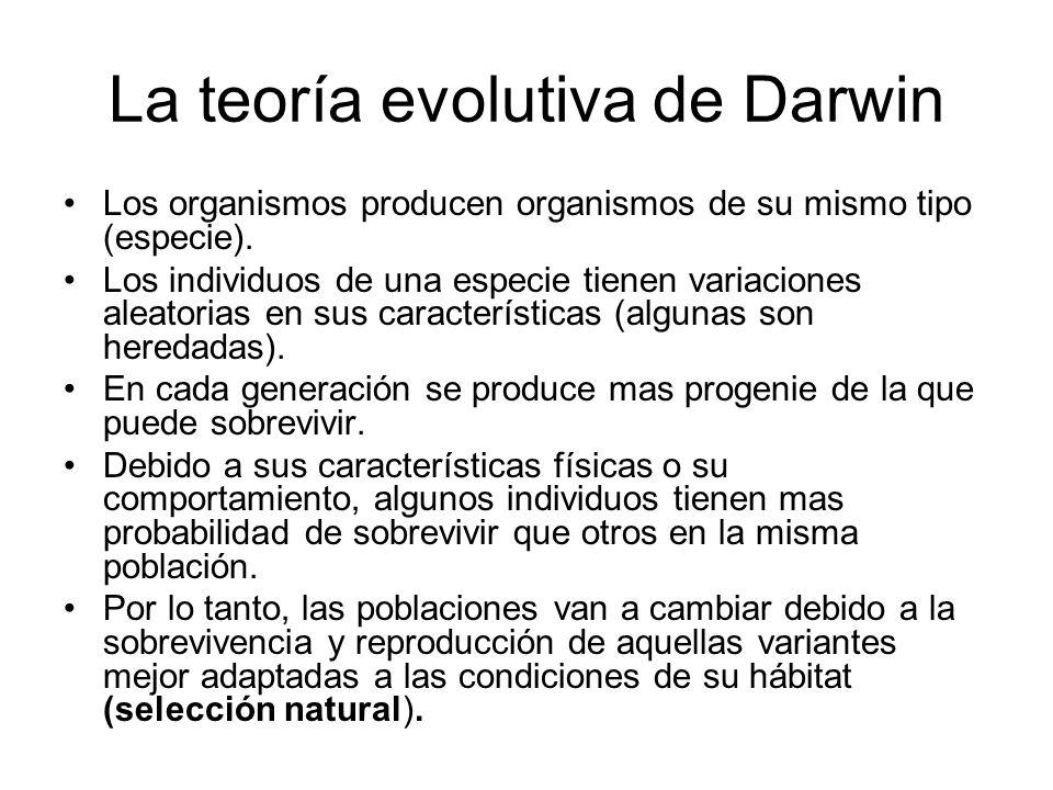 La teoría evolutiva de Darwin