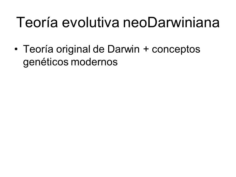 Teoría evolutiva neoDarwiniana