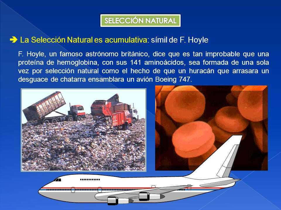  La Selección Natural es acumulativa: símil de F. Hoyle