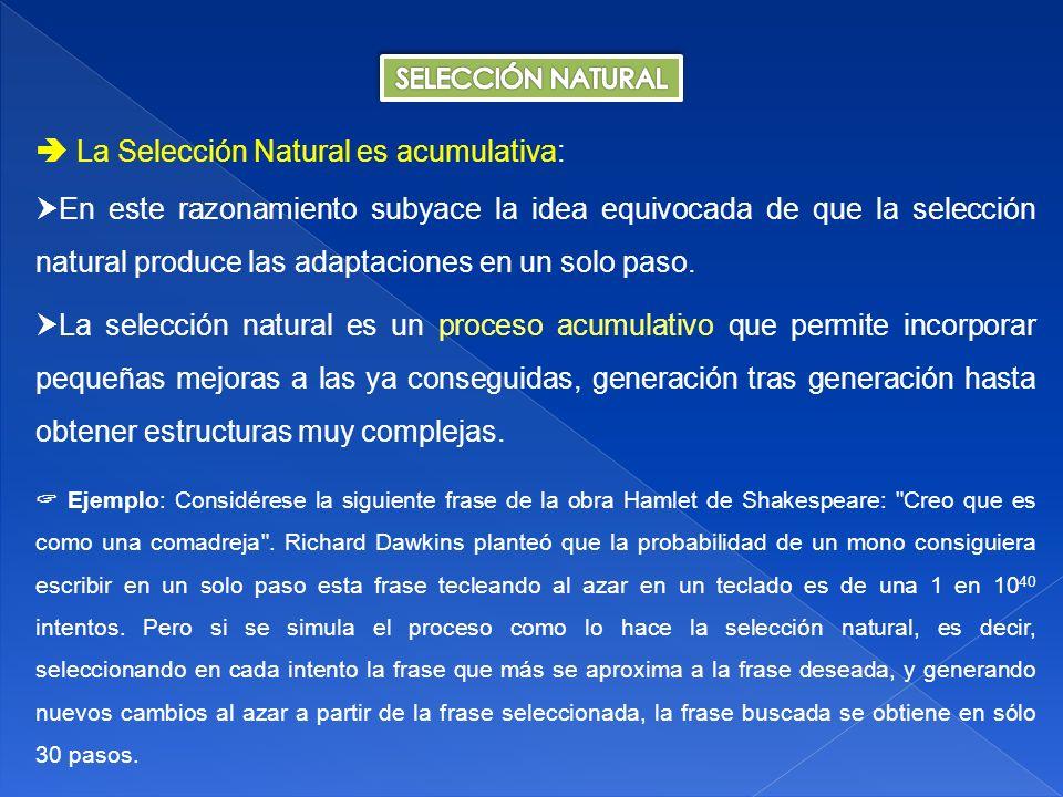  La Selección Natural es acumulativa: