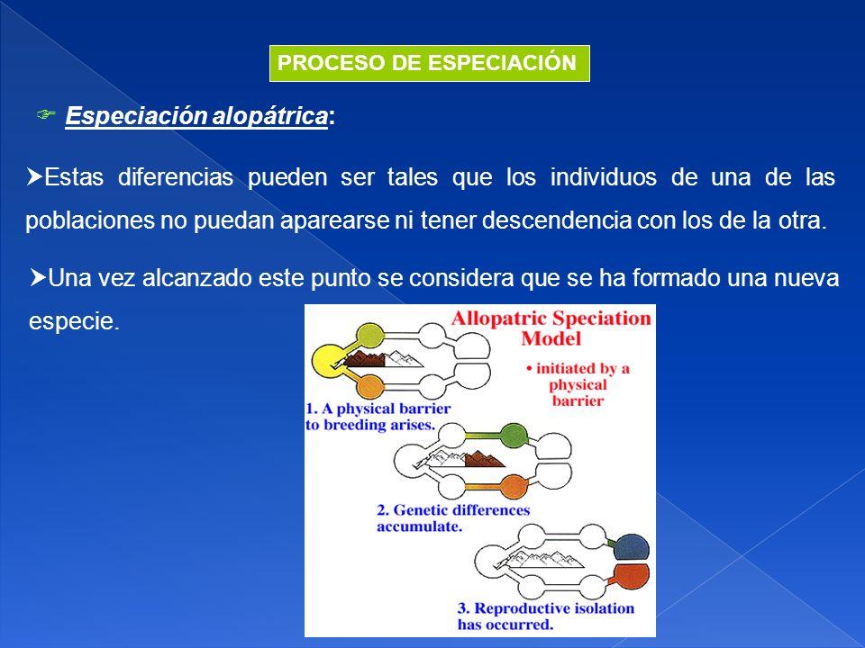  Especiación alopátrica: