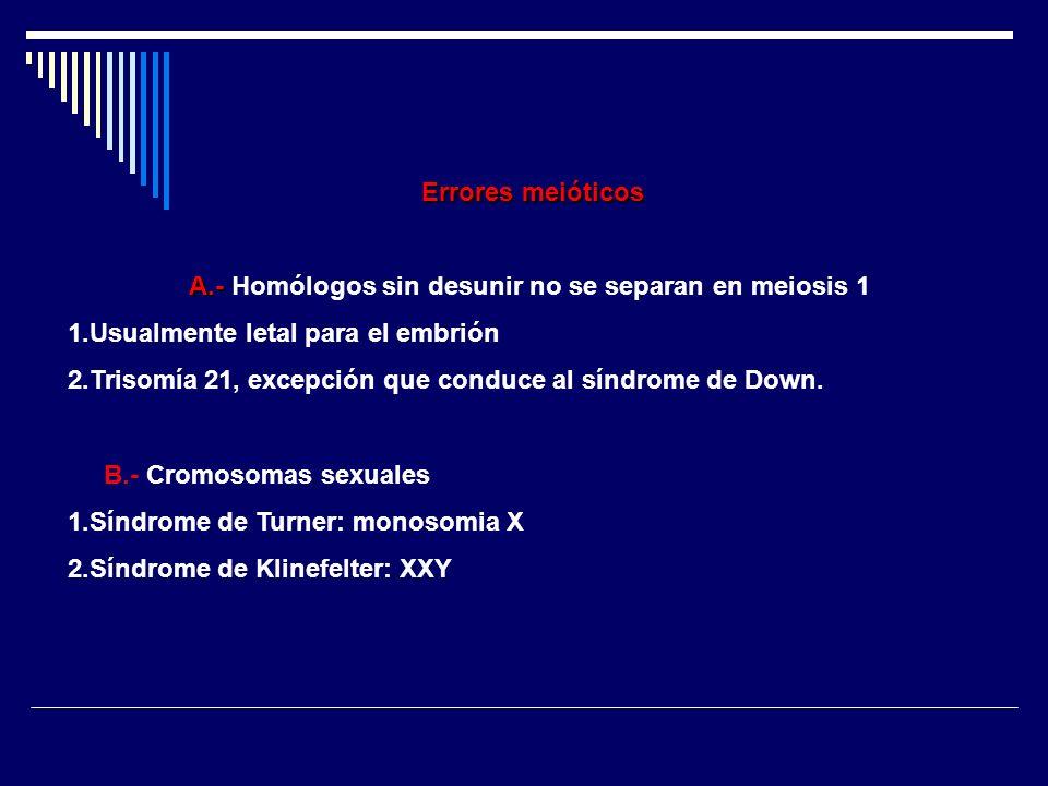 A.- Homólogos sin desunir no se separan en meiosis 1