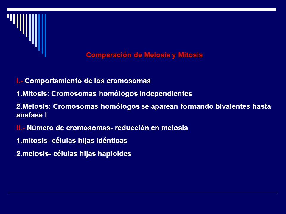 Comparación de Meiosis y Mitosis