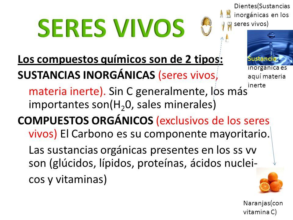 SERES VIVOS Los compuestos químicos son de 2 tipos: