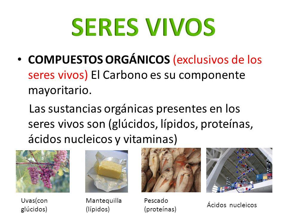 SERES VIVOS COMPUESTOS ORGÁNICOS (exclusivos de los seres vivos) El Carbono es su componente mayoritario.
