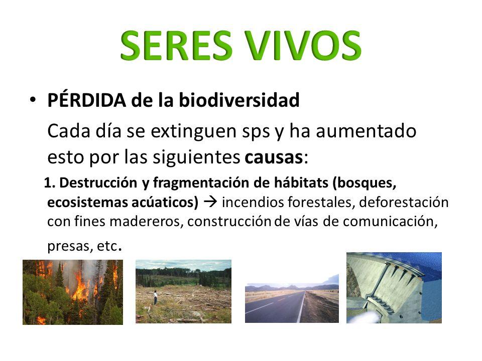 SERES VIVOS PÉRDIDA de la biodiversidad