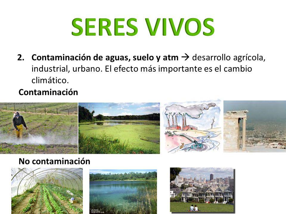 SERES VIVOS Contaminación de aguas, suelo y atm  desarrollo agrícola, industrial, urbano. El efecto más importante es el cambio climático.