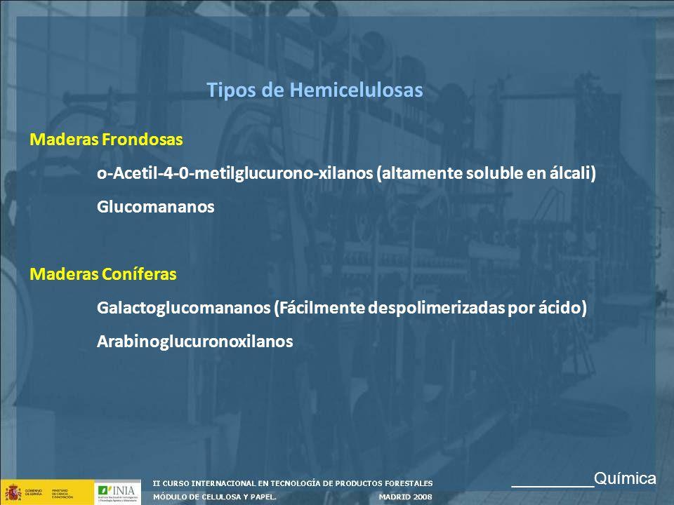 Tipos de Hemicelulosas