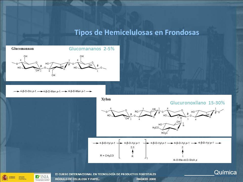 Tipos de Hemicelulosas en Frondosas