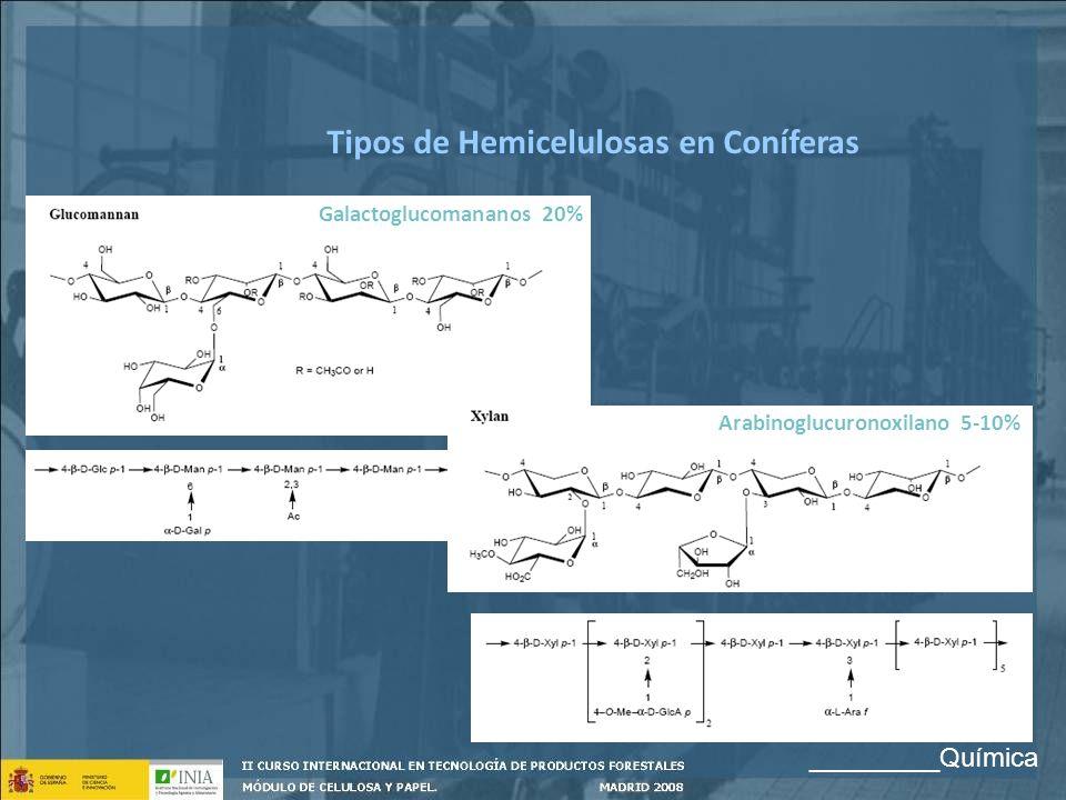 Tipos de Hemicelulosas en Coníferas