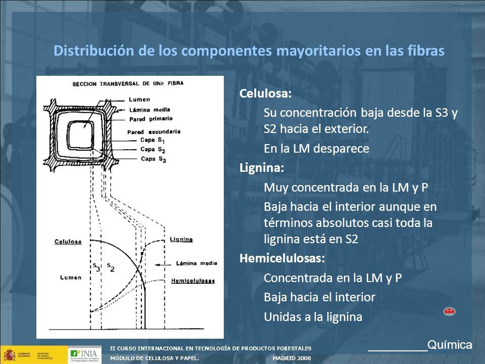 Distribución de los componentes mayoritarios en las fibras