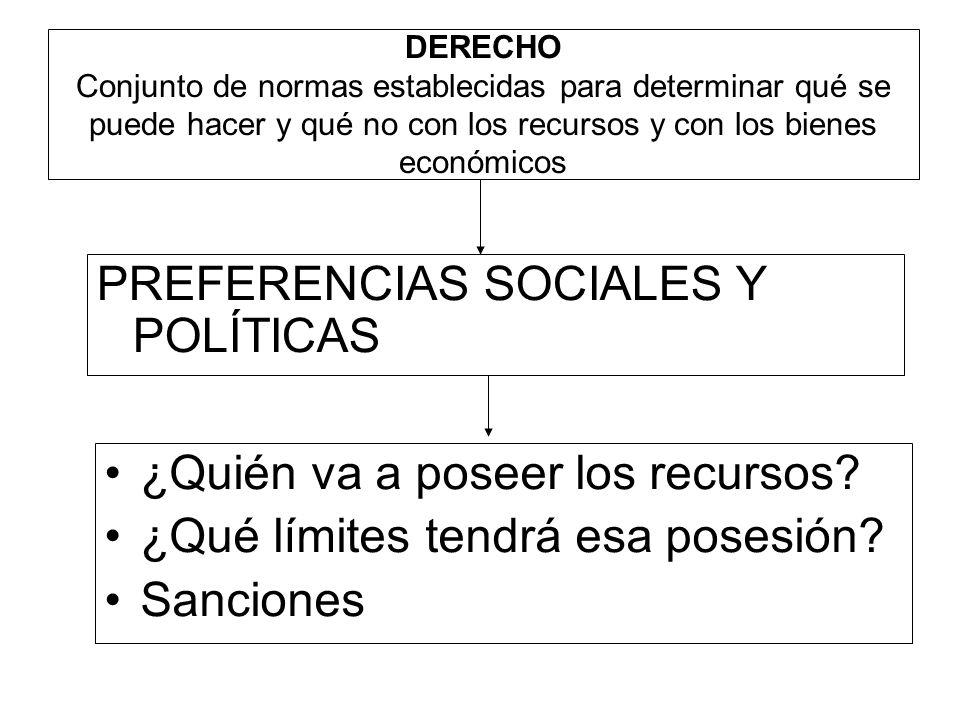 PREFERENCIAS SOCIALES Y POLÍTICAS