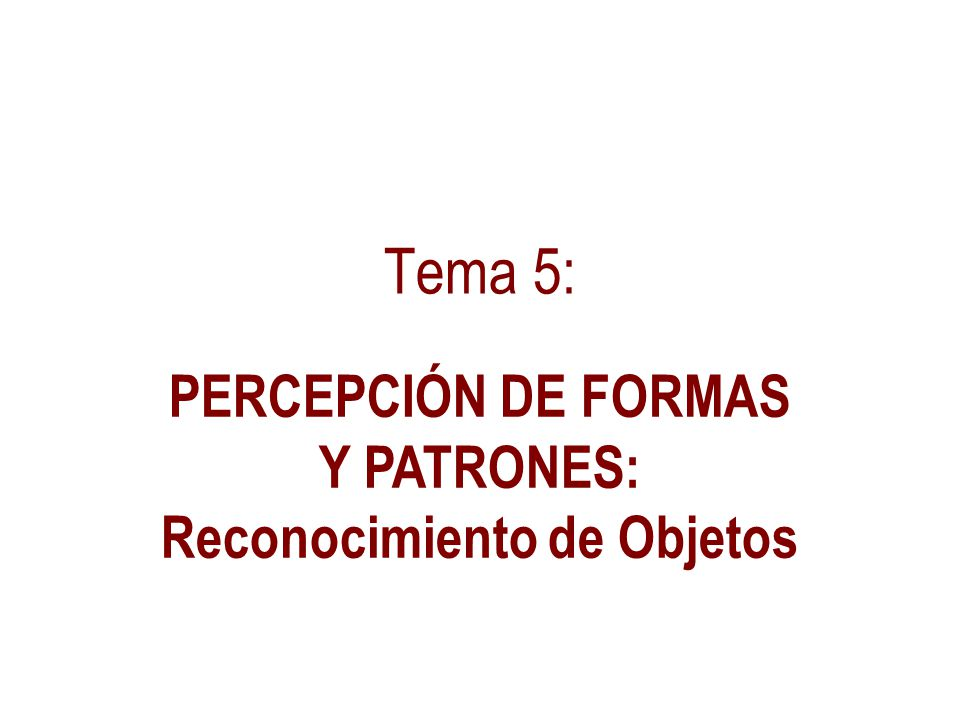 PERCEPCIÓN DE FORMAS Y PATRONES: Reconocimiento de Objetos
