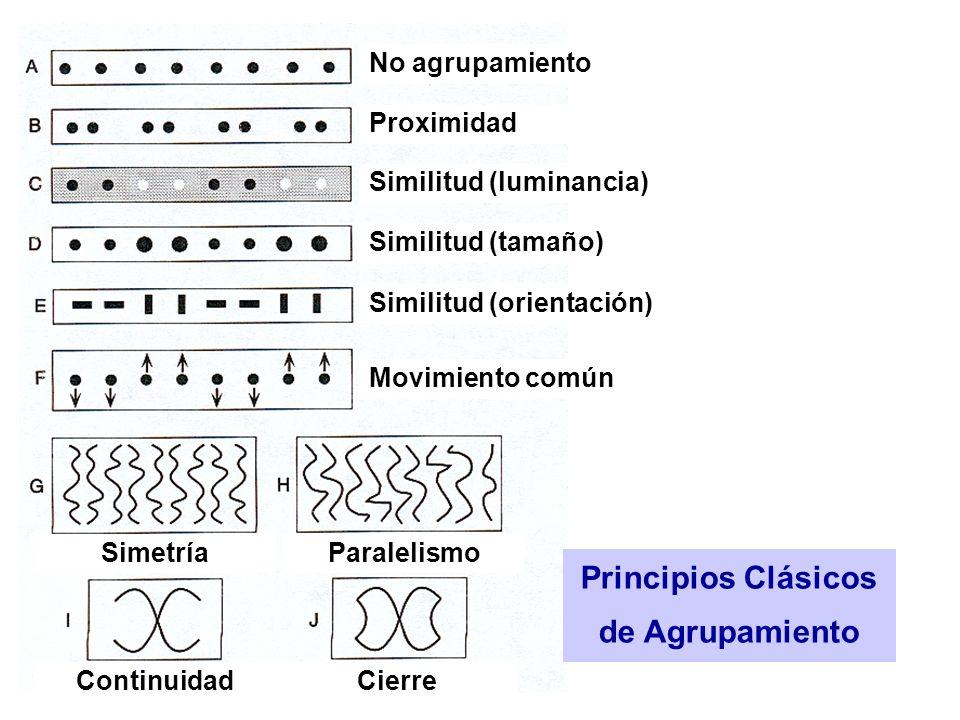 Principios Clásicos de Agrupamiento