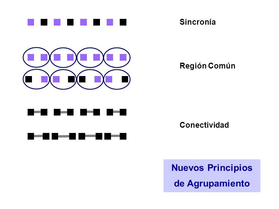 Nuevos Principios de Agrupamiento