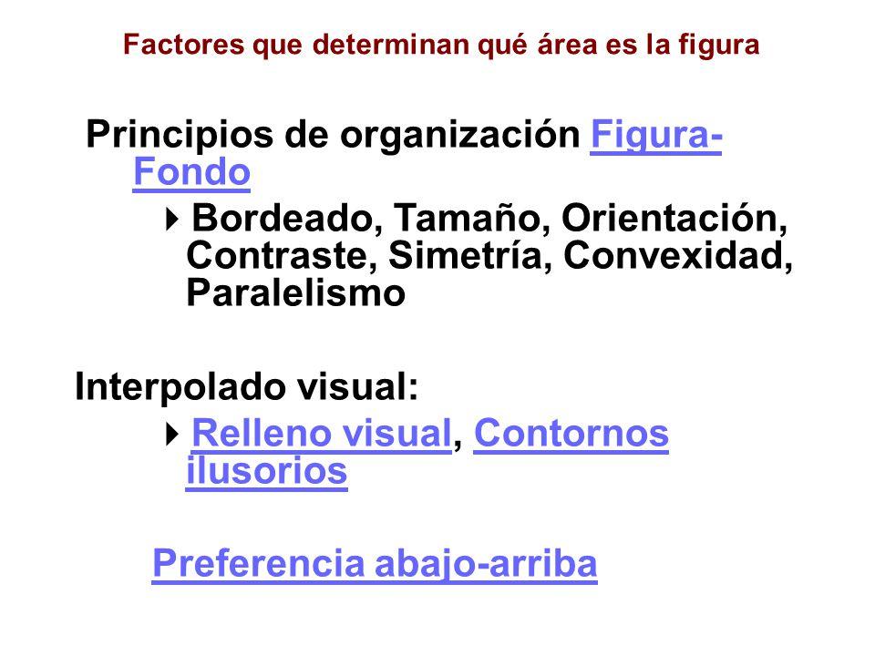 Principios de organización Figura-Fondo