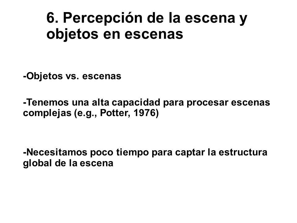 6. Percepción de la escena y objetos en escenas