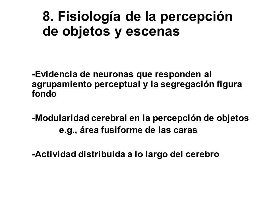 8. Fisiología de la percepción de objetos y escenas