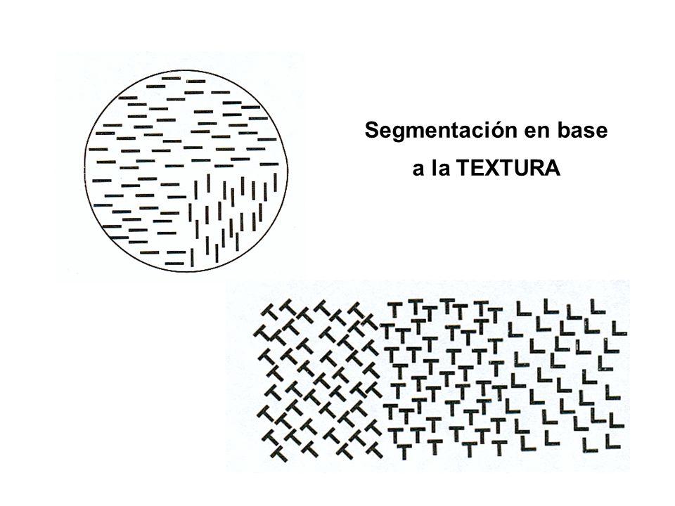 Segmentación en base a la TEXTURA
