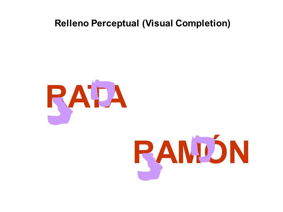 Relleno Perceptual (Visual Completion)