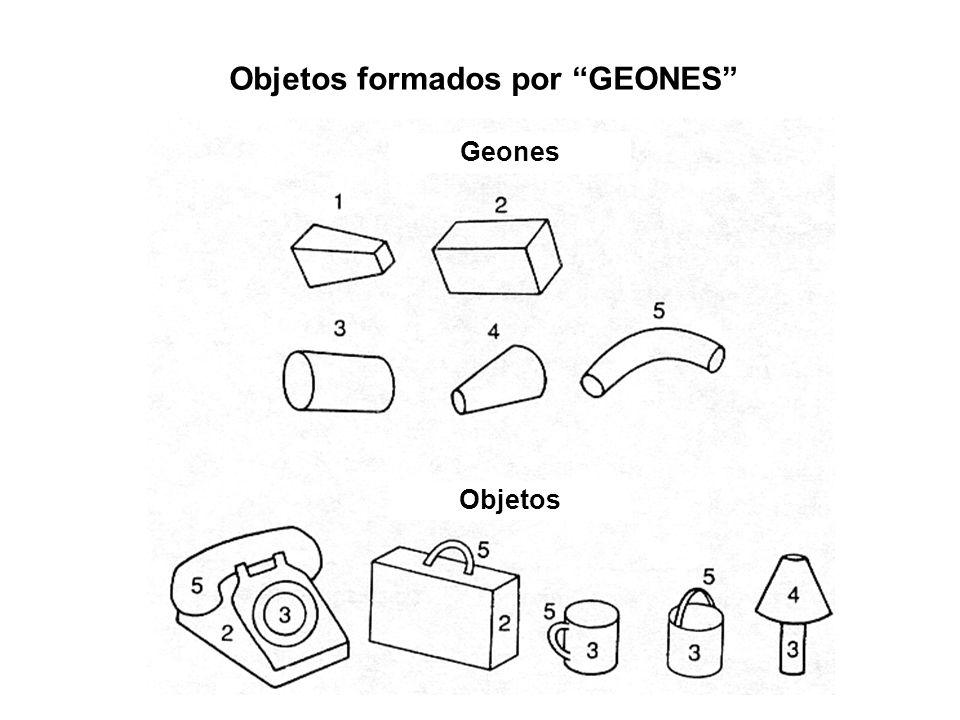 Objetos formados por GEONES