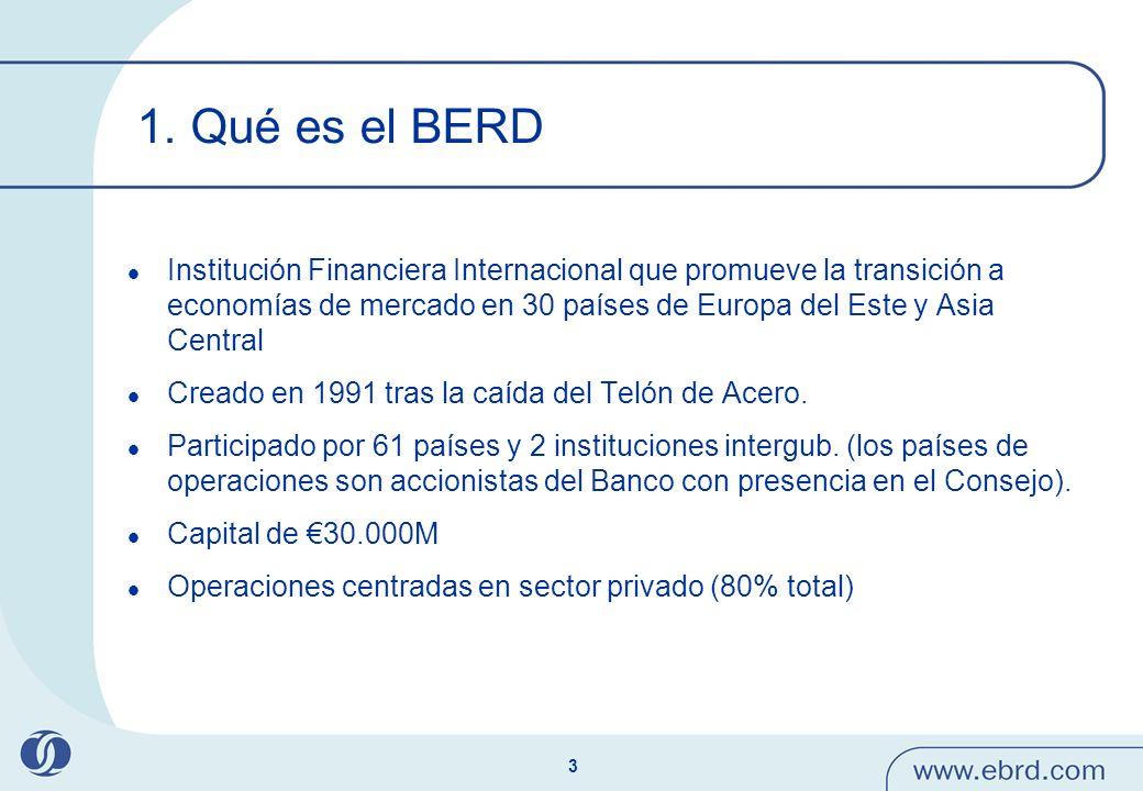 1. Qué es el BERD