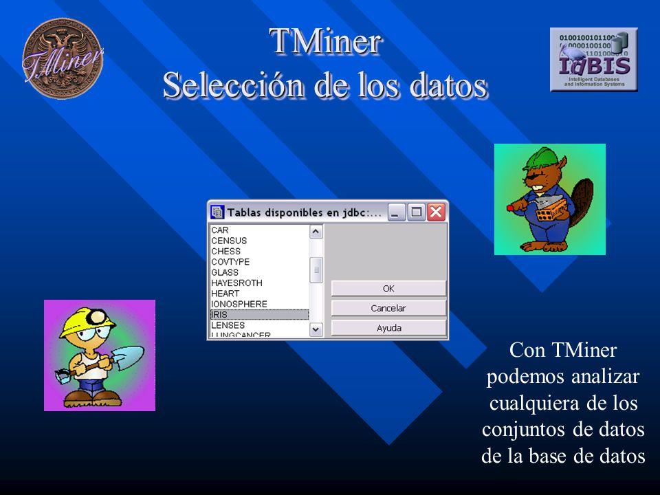 TMiner El conjunto de datos