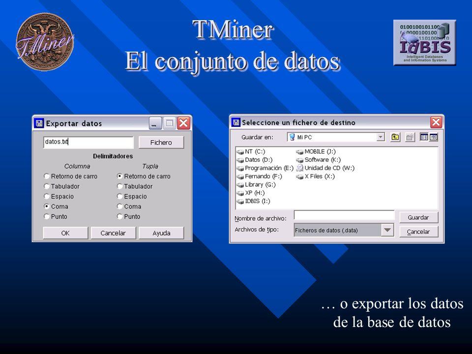 TMiner Preparación de los datos