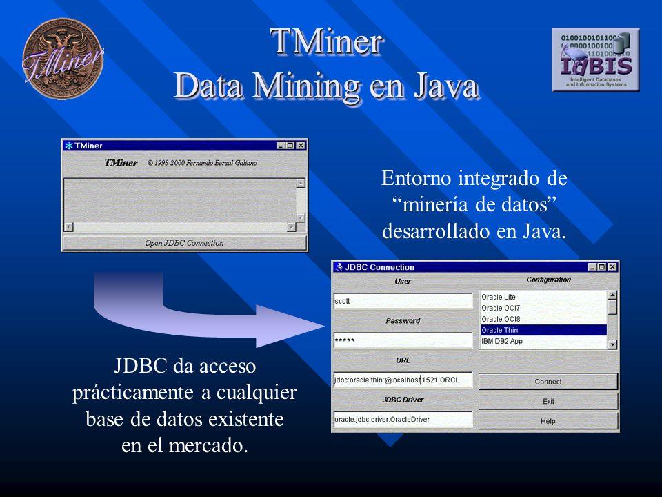 TMiner Modelo conceptual