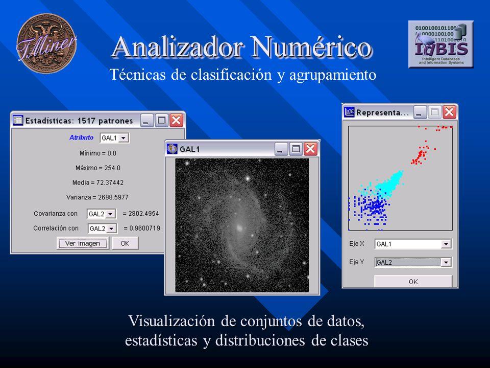 Analizador Numérico Técnicas de clasificación y agrupamiento