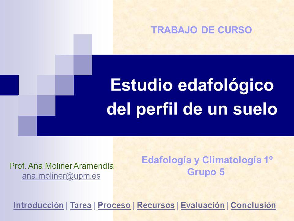 Estudio edafológico del perfil de un suelo