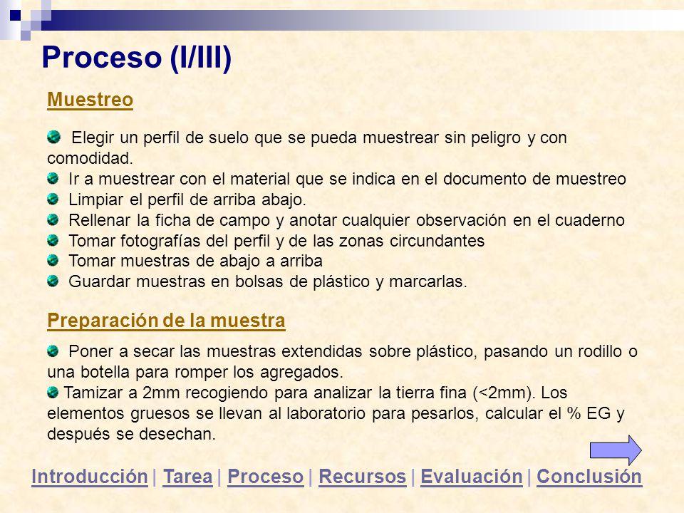 Proceso (I/III) Muestreo