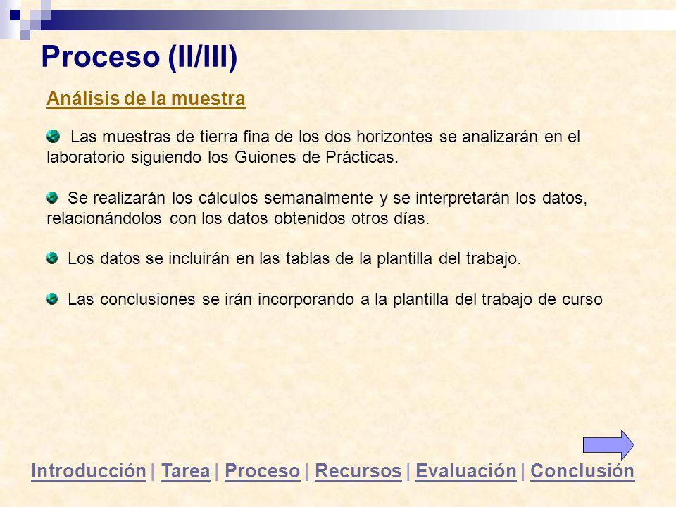 Proceso (II/III) Análisis de la muestra