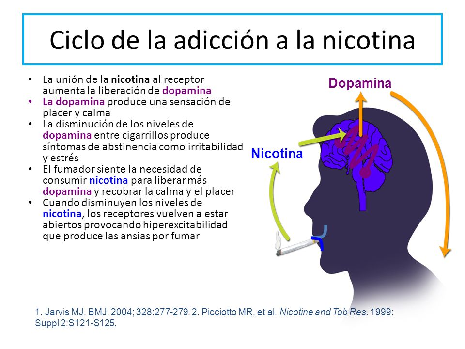 Ciclo de la adicción a la nicotina