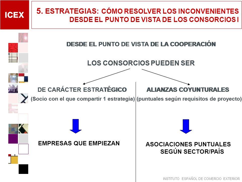 5. ESTRATEGIAS: CÓMO RESOLVER LOS INCONVENIENTES DESDE EL PUNTO DE VISTA DE LOS CONSORCIOS I