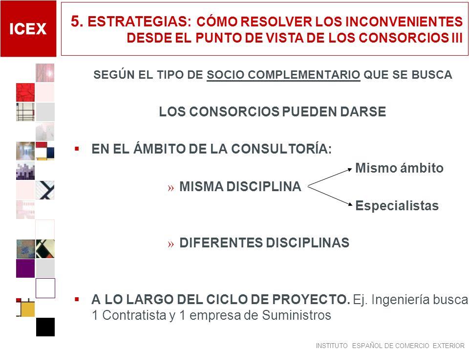 5. ESTRATEGIAS: CÓMO RESOLVER LOS INCONVENIENTES DESDE EL PUNTO DE VISTA DE LOS CONSORCIOS III