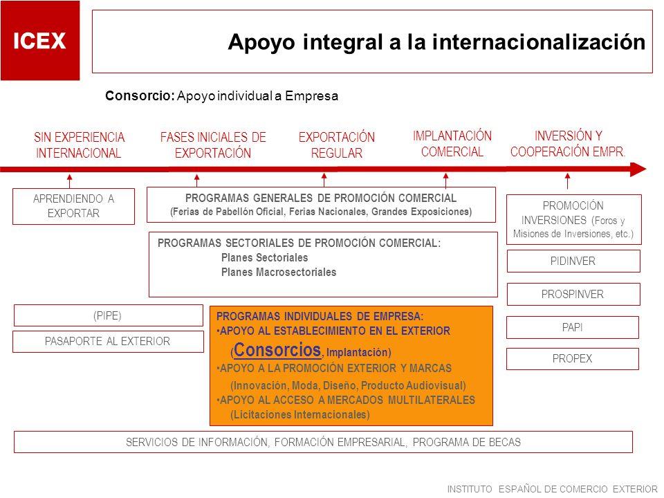 Apoyo integral a la internacionalización