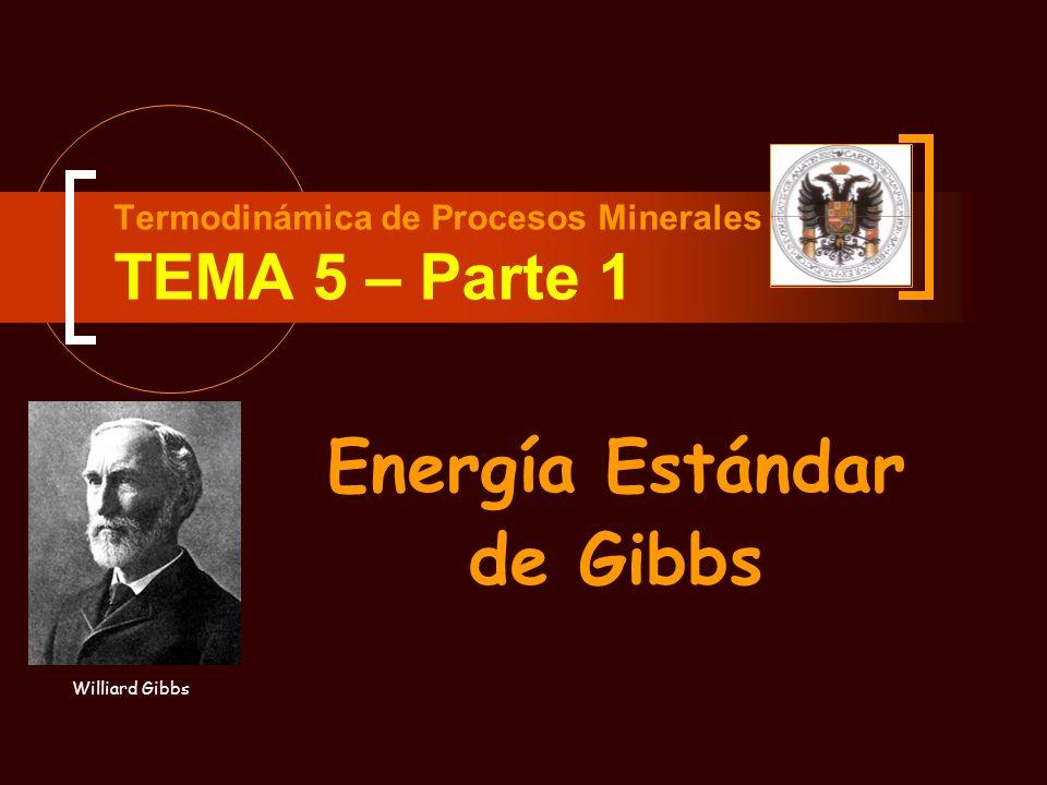 Termodinámica de Procesos Minerales TEMA 5 – Parte 1